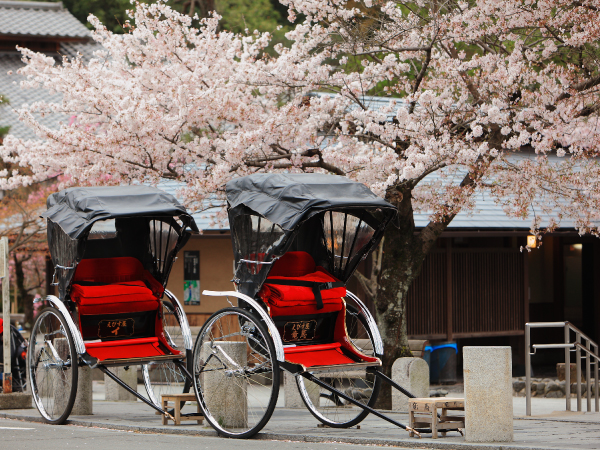 Family Japanese Rickshaw Luxury Travel Japan Regency Group