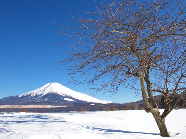 Hakone Mount Fuji Winter Luxury Travel Japan Regency Group