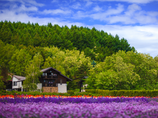 Hokkaido Furano Flower Field Luxury Travel Japan Regency Group