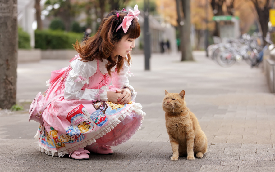 cat family travel luxury travel japan regency group