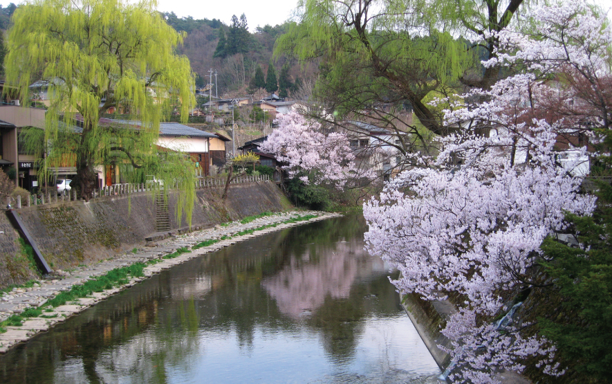 View of Takayama during the Spring Festiva