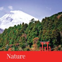 nature travel japan regency group
