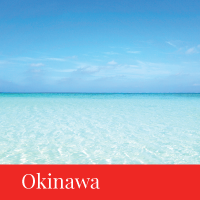 okinawa travel japan regency group