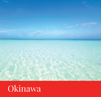 destination okinawa japan regency group
